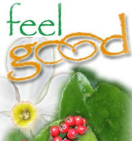 logo_feel_good_acupuncture_Queens_NY